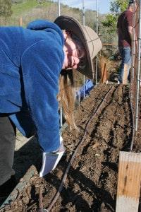 PlantingSeedInGardenBed-200x300