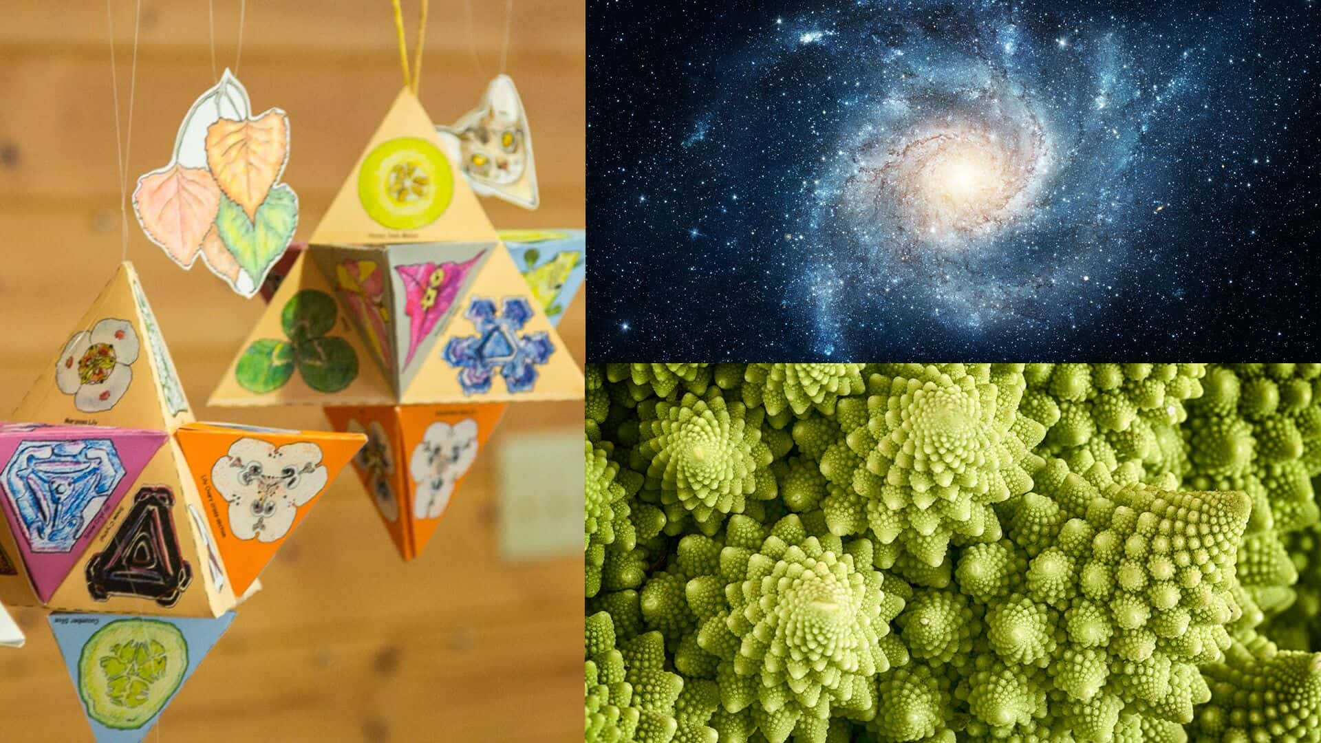 Sacred Geometry Workshop - Divine Patterns in Nature