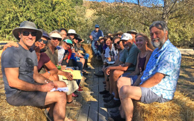 Hay Ride and Tour