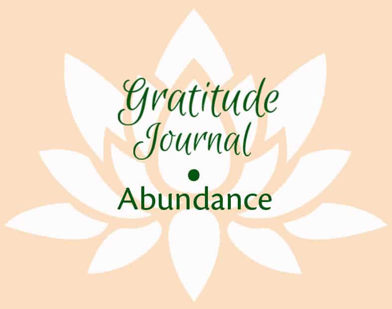 Gratitude Journal • Abundance