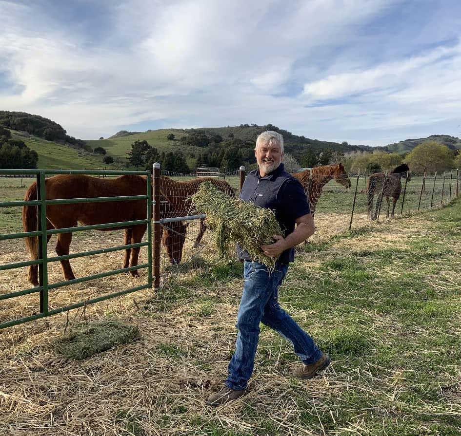 Heiko feeds horses