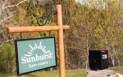 Light on Sunburst Sanctuary – Today