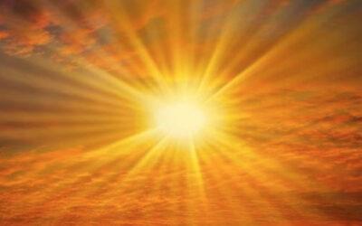 In Sunshine
